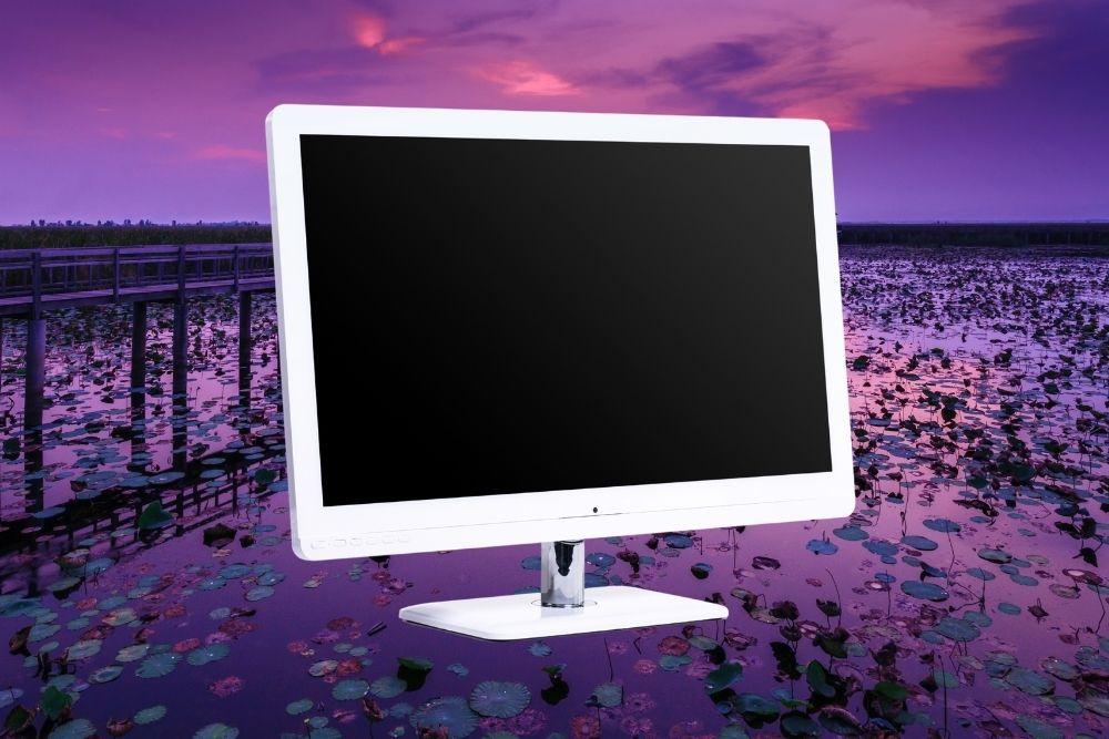 Mejores monitores de color blanco